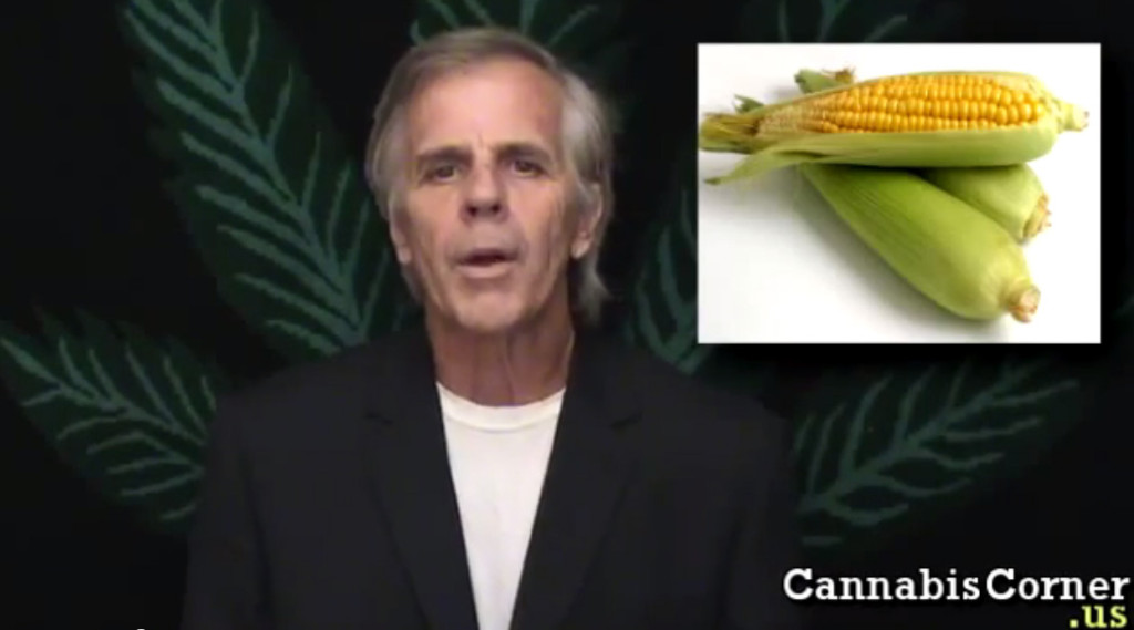 Hemp fuel vs. Corn Fuel with Carry Burns